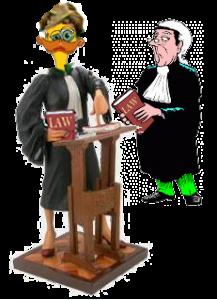 Duck Law