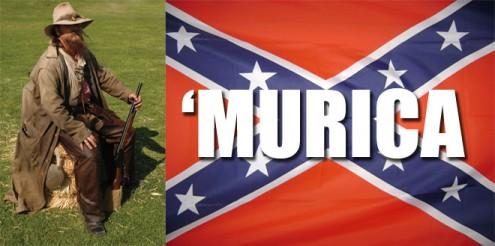 MURICA-redneck-confederate-flag-495x246