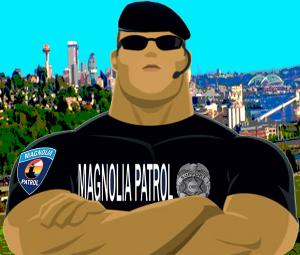 Seattle Vigilante