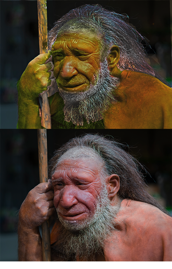 What Race was Neanderthal